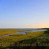Title:   Son of a Gun Gonna Have Big Fun<br /> <br /> Comments: <br /> <br /> Location: Aransas National Wildlife Refuge