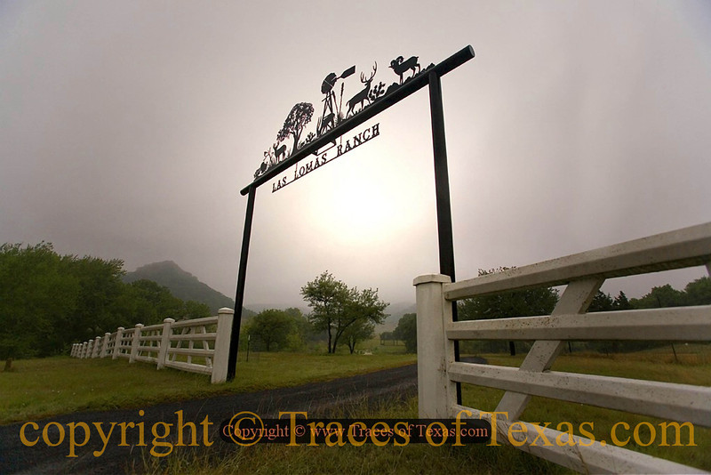 Title:   Las Lomas<br /> <br /> Comments: On a foggy, treacherous drive through the hill country I came upon a lovely vision. <br /> <br /> Location: Utopia