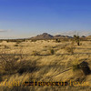 Title:   Winter Light <br /> <br /> Comments: <br /> <br /> Location: West Texas