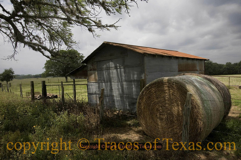 Title:   Where I Found the Gun<br /> <br /> Comments:<br /> <br /> Location:  Gonzales