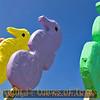 Title:   Giant Seahorse Lollipops <br /> <br /> Comments: <br /> <br /> Location: Port Aransas