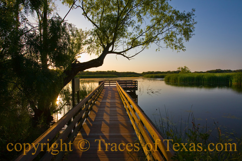 Title:   Where the Wild Things Are<br /> <br /> Comments: This pond was filled with alligators.<br /> <br /> Location: Aransas National Wildlife Refuge