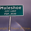 Title: Mystical  Muleshoe Moment<br /> <br /> Comments:  One of my hundreds of photos of city limits signs.<br /> <br /> Location: Muleshoe