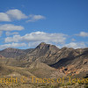 Title:<br /> <br /> Comments:<br /> <br /> Location: Big Bend National Park