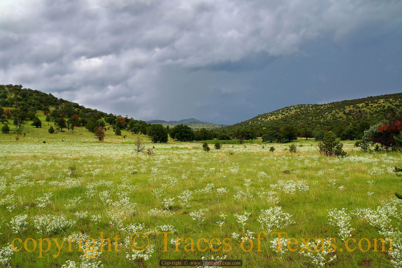 Title:   Is this Heaven?<br /> <br /> Comments: No, it's west Texas. <br /> <br /> Location: Davis Mountains