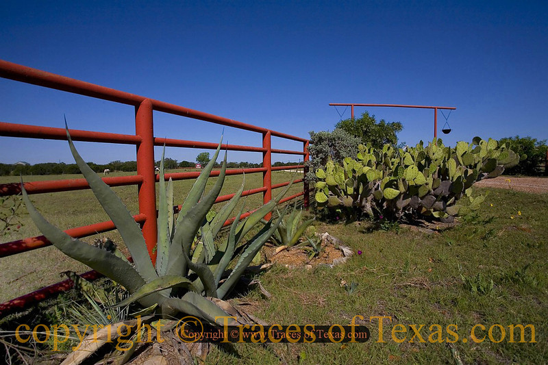 Title:   Just Over the Next Hilltop <br /> <br /> Comments: <br /> <br /> Location: Dripping Springs