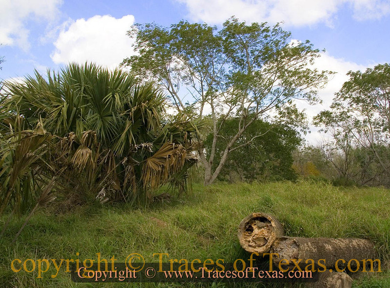 Title: Seeing Through Cabeza De Vaca's Eyes  <br /> <br /> Comments: Almost 500 years ago, Cabeza de Vaca wandered these very prairies. I would imagine it looked much like this.<br /> <br /> Location:  Los Indios
