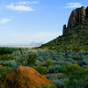 Title:   Mother and Child Reunion <br /> <br /> Comments: How green it was that summer in Big Bend!<br /> <br /> Location: Big Bend