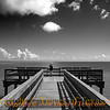 Title: She is Out Standing Among Her Piers<br /> <br /> Comments: Trying to figure out if I like this version or the color version better.<br /> <br /> Location: Aransas National Wildlife Refuge