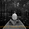 Title: Then She Gets You On Her Wavelength and She Lets the Bayou Answer<br /> <br /> Comments: And the shadows poured like honey on our lady of the mirror ...<br /> <br /> Location: Big Cypress Bayou