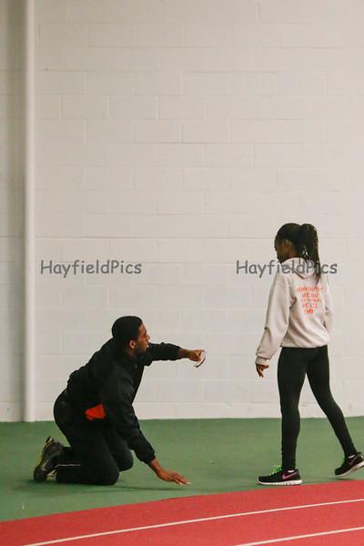 Hayfield-9233