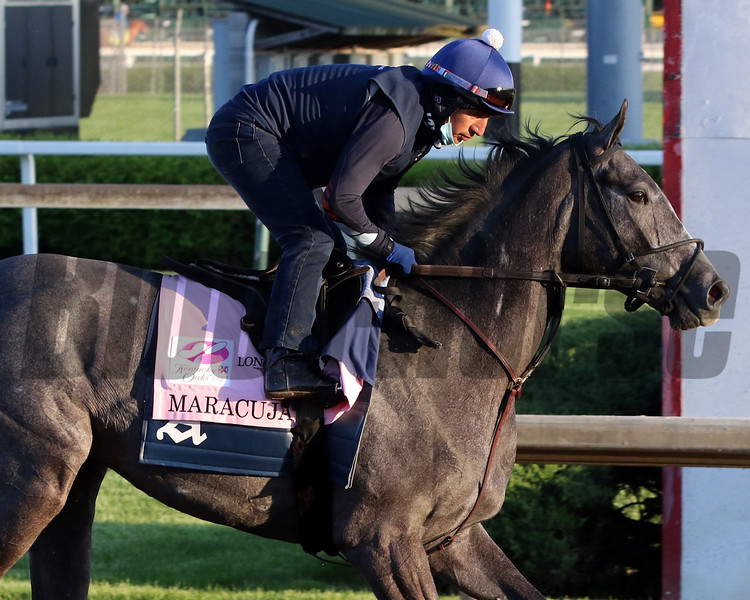 Maracuja on the track at Churchill Downs on April 27, 2021. Photo By: Chad B. Harmon