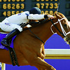 Dreaming of Anna wins the 2006 Breeders' Cup Juvenile Fillies<br /> Breeders' Cup day on November 4, 2006, at Churchill Downs in Louisville, Ky.<br /> Photo by Anne M. Eberhardt