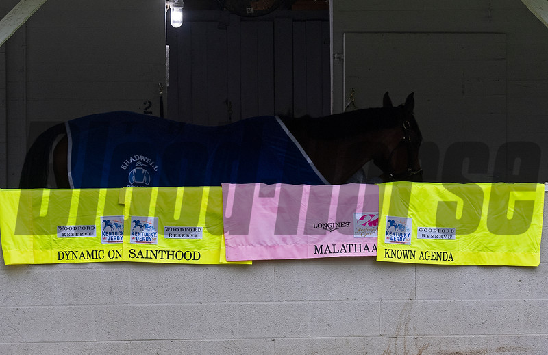 Pletcher saddlecloths for Oaks and Derby<br /> Kentucky Derby and Oaks horses, people and scenes at Churchill Downs in Louisville, Ky., on April 23, 2021.