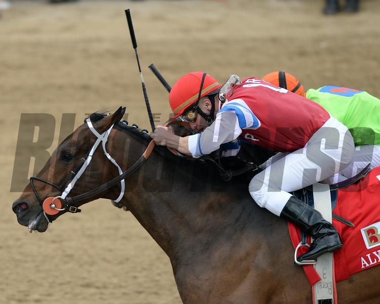Moonshine Mullin, Calvin Borel up, wins the Alysheba Stakes, Churchill Downs, Louisville, KY 5/3/14, photo by Mathea Kelley;