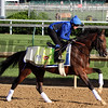 Thunder Snow Kentucky Derby Chad B. Harmon