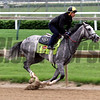Cherry Wine Churchill Downs Chad B. Harmon