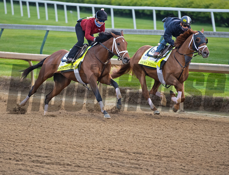 (L-R): Sainthood and Known Agenda working<br /> Kentucky Derby and Oaks horses, people and scenes at Churchill Downs in Louisville, Ky., on April 23, 2021.