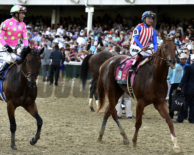 Firing Line<br /> Kentucky Derby 141<br /> Dave Harmon Photo