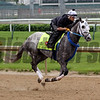Creator Churchill Downs Chad B. Harmon