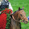 Mine That Bird Calvin Borel win 2009 KY Derby churchill downs in winners circle.<br /> Photo by: Mathea Kelley