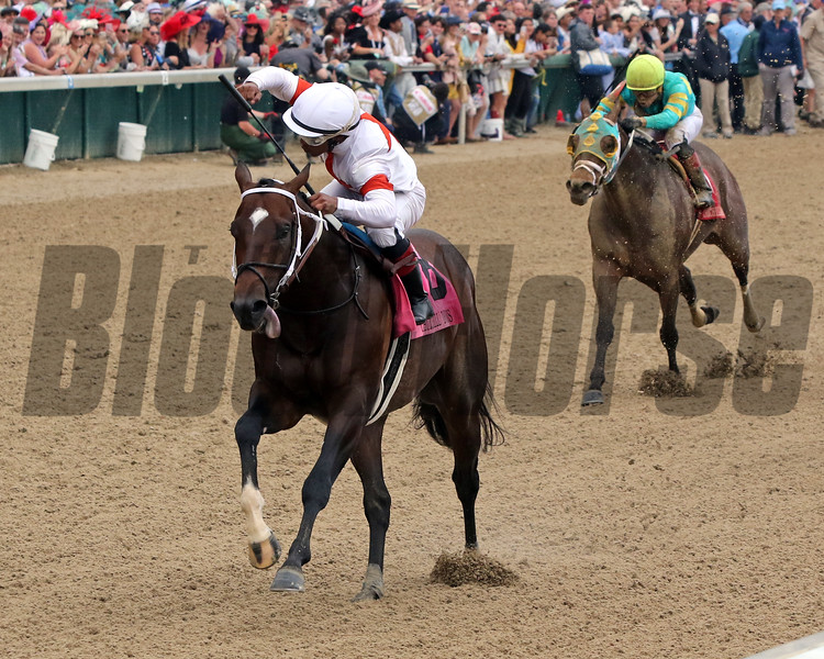 Mitole wins 2019 Churchill Downs Stakes at Churchill Downs. Photo: Chad B. Harmon