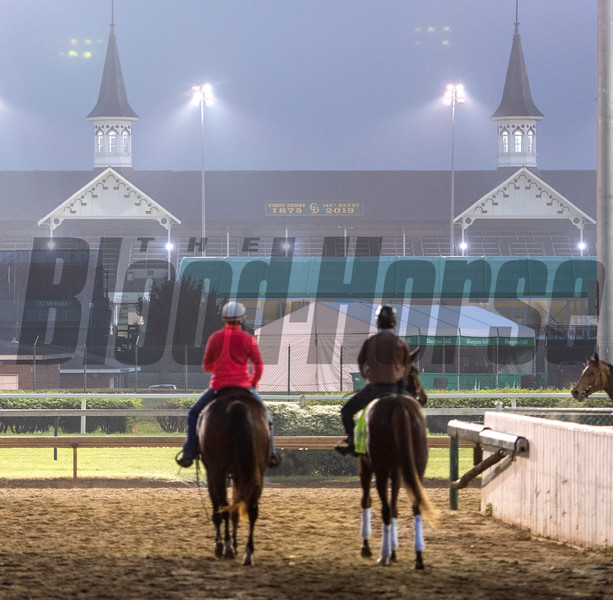 Master Fencer, right,  goes out for a gallop on the main track at Churchill Downs Thursday May 2, 2019 in Louisville, KY.<br /> Photo by Skip Dickstein