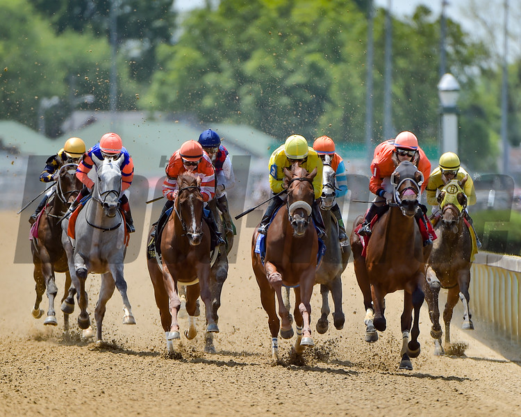 The field in the Eight Belles (gr. II) rally down the backstrech at Churchill Downs.