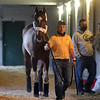 Brooklyn Strong arrived at Churchill Downs on April 27, 2021. Photo By: Chad B. Harmon