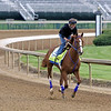 King Fury with Brian Hernandez on the track at Churchill Downs on April 24, 2021. Photo By: Chad B. Harmon