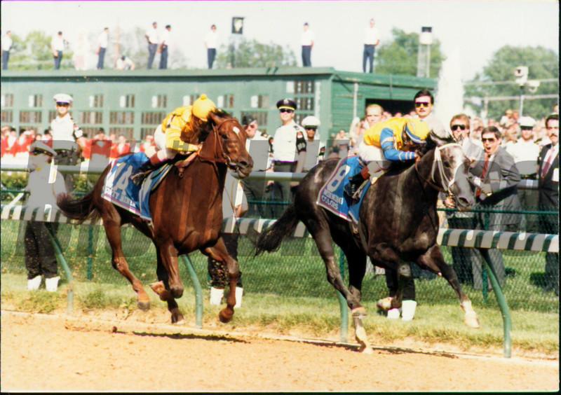 Winning Colors 1988 Kentucky Derby<br /> Skip Dickstein Photo