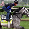 Fast and Accurate Kentucky Derby Chad B. Harmon