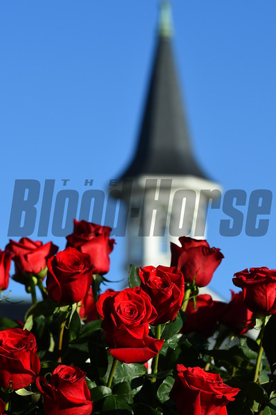 Close up of roses. A scene at Churchill Downs Race Course Saturday Sept 5, 2020 in Louisville, KY. Photo by Rick Samuels.