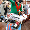 John Velasquez celebrated winning the 137th Kentucky Derby (G. I) aboard Animal Kingdom on May 7, 2011. Photo by Crawford Ifland.