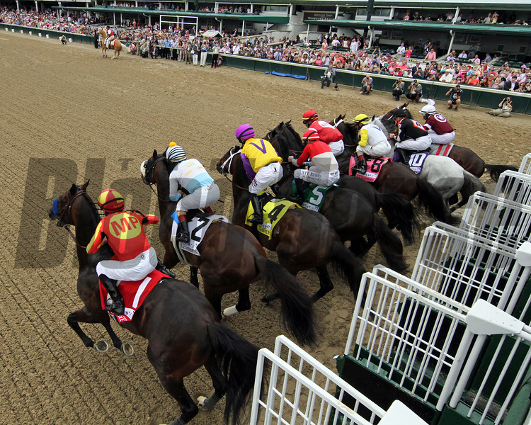 McKinzie wins the Alysheba Stakes Friday, May 3, 2019 at Churchill Downs. Photo: Chad B. Harmon