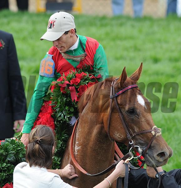 Animal Kingdom John Velazqueaz up, wins the 137th Kentucky Derby ; Churchill Downs, Louisville, kY 5/7/11 photo by Mathea Kelley,