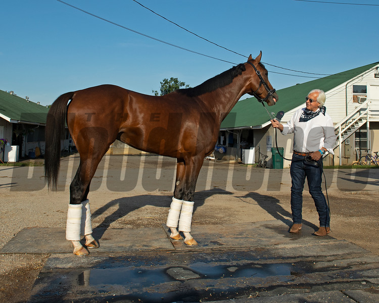 Baffert and Authentic the morning after Authentic wins the Kentucky Derby (G1) at Churchill Downs, Louisville, KY on September 5, 2020. Photo: Anne M. Eberhardt