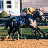 Silver Charm wins the 1998 Clark Handicap at Churchill Downs.<br /> Photo by: Anne M. Eberhardt