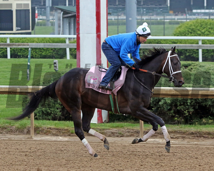 Will's Secret on the track at Churchill Downs on April 25, 2021. Photo By: Chad B. Harmon