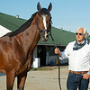 Bob Baffert with Authentic.<br /> The morning after Authentic wins the Kentucky Derby (G1) at Churchill Downs, Louisville, KY on September 5, 2020.