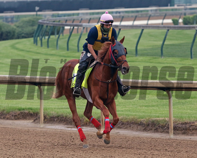 O Besos on the track at Churchill Downs on April 25, 2021. Photo By: Chad B. Harmon