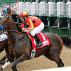 McKinzie wins the the Alysheba Stakes Friday, May 3, 2019 at Churchill Downs. Photo: Chad B. Harmon