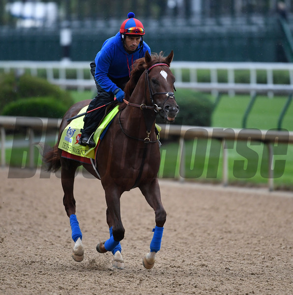 Irish War Cry out for exercise Wednesday morning May 4, 2017 in preparation for Saturday's 143rd running of the Kentucky Derby at Churchill Downs in Louisville, Kentucky.  Photo by Skip Dickstein
