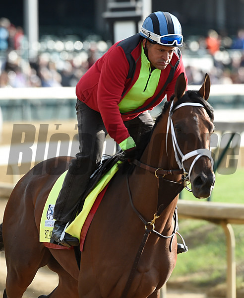 State of Honor gallops at Churchill Downs May 3, 2017 in Louisville, KY.  Photo by Skip Dickste