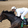 Rachel Alexandra, Calvin Borel win KY Oaks 2009, churchill downs<br /> Mathea Kelley Photo