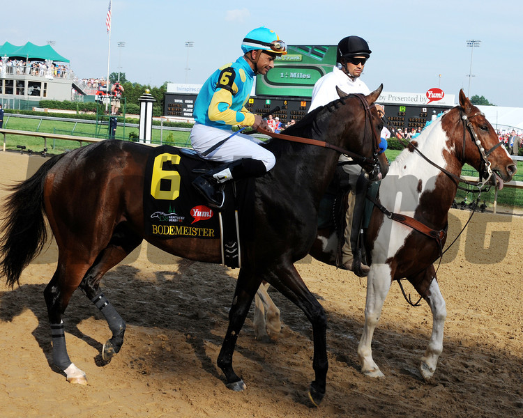 Bodemeister before  the 2012 Kentucky Derby.<br /> Photo by Dave Harmon