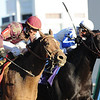 Dakota Phone, Joel Rosario up catches Morning Line to win the DIrt MIle 2010,  Churchill Downs; Louisville; KY; 11.6.10; Mathea Kelley
