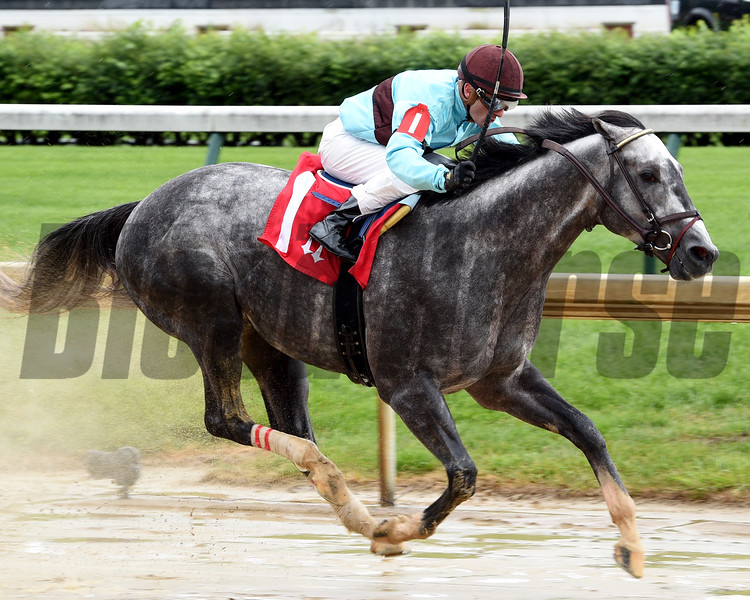 Bird Song with jockey Julien Leparoux wins the 14th running of The Alysheba May 5, 2017 at Churchill Downs in Louisville, KY.