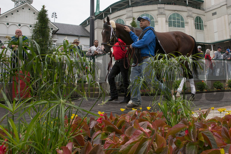 Classic Empire schooling on Wednesday, May 3rd, 2017 at Churchill Downs.