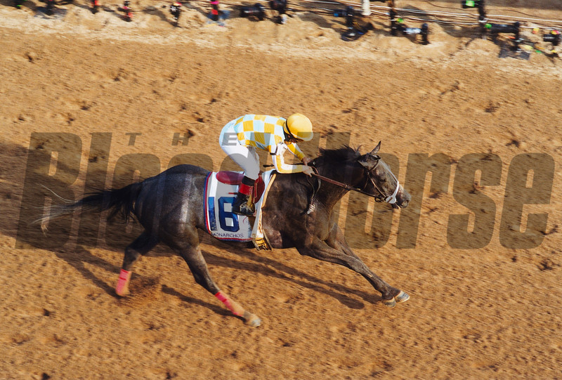 Monarchos wins the 2001 Kentucky Derby at Churchill Downs.<br /> Photo by: Rick Samuels